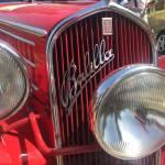 Fiat Passion Profile Picture